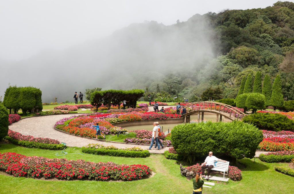 The Cloud Forest of Doi Inthanon