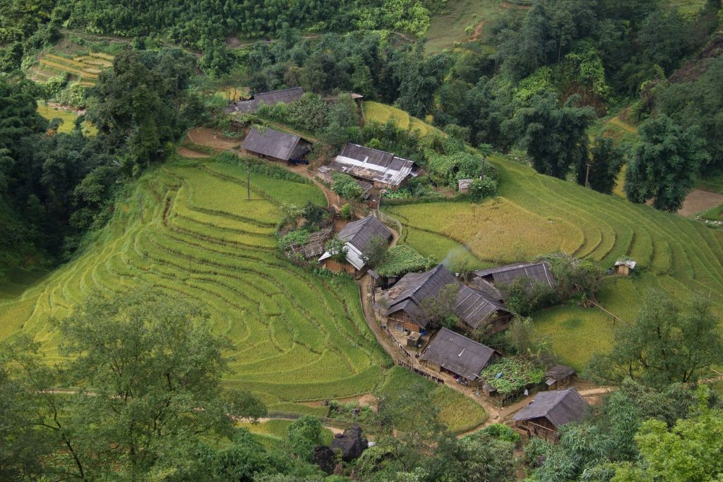 A bird's-eye view of Sa Pa rice terraces