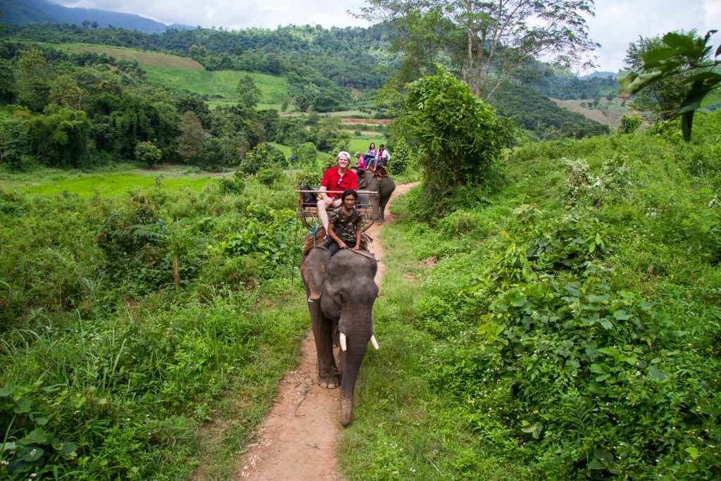 Elephant ride - Thailand