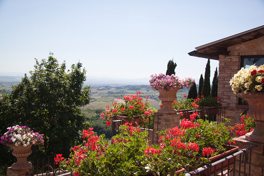 A view from a Montefollonico terrace