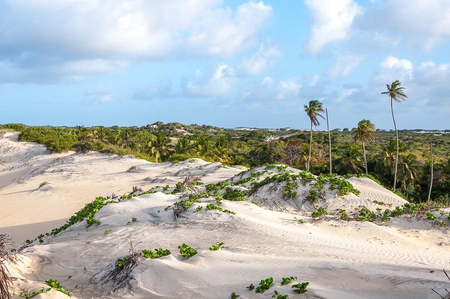 Sand dunes in Natal, Brazil